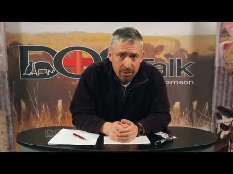 DocTalk - Cattle Physical Exam - January 23, 2017