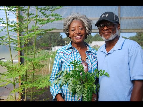 Alabama NRCS 2017 Small Farmers of the Year | Russell and Jewel Bean