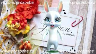 Поздравление с днем учителя от Zoobe Зайки Домашней Хозяйки