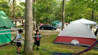 Turkey Swamp Camping 2018