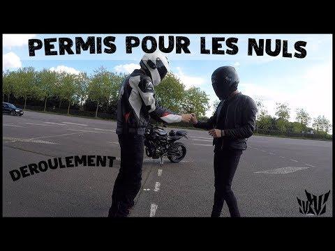 LE PERMIS POUR LES NULS : DEROULEMENT 😁 (part1/4)