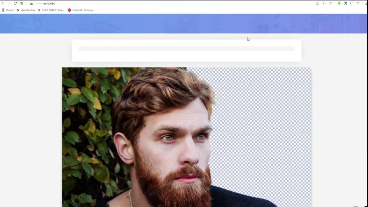 какие вырезать из фото человека приложение иллюстрированная