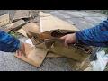 Dumpster Diving For Live Bait - Vlog
