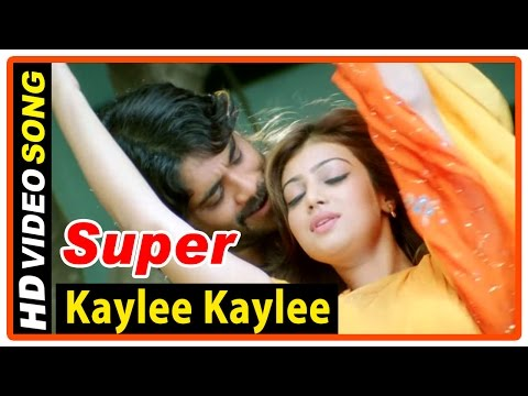 Super Tamil Movie | Songs | Kaylee Kaylee song | Nagarjuna | Ayesha Takia