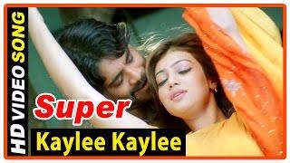 Super Tamil Movie , Songs , Kaylee Kaylee Song , Nagarjuna , Ayesha Takia