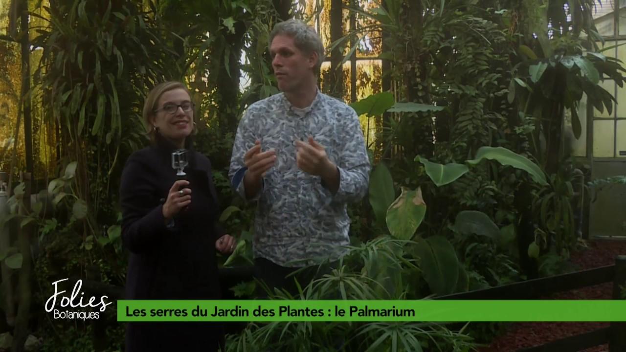 Folies Botaniques dans les Serres #5 : le Palmarium - YouTube