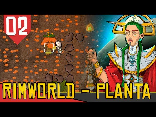 Casais, Quartos e Arvoredos - Rimworld Ideology das Arovres #02 [Série Gameplay PT-BR]