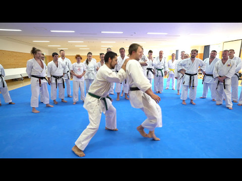 Okinawan Martial Arts Budosai Seminar at the Karate Kaikan, April 29th 2017
