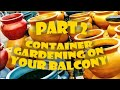 Container Gardening On Your Balcony! Containers At Home Depot