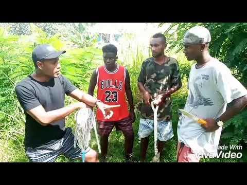 Download Home Boys_virgin part(3)funny clip (Solomon islands)latest 2020