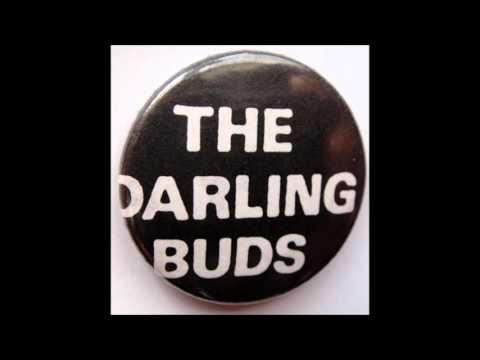 The Darling Buds - Port Talbot 1987