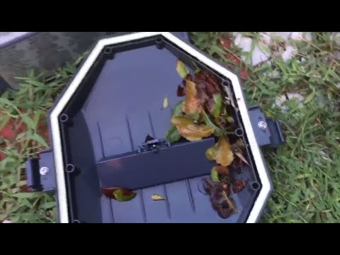 Cleaning The Intex Auto Pool Cleaner