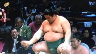 平成28年大相撲九州場所 11月26日 Sumo -Kyushu Basho.