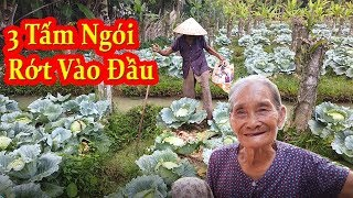 Kỳ Lạ Bà cụ 80 tuổi bị 3 tấm ngói rớt trúng đầu mà vẫn không sao