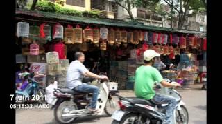 L'adoption de Stella au Vietnam