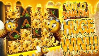 Wild Swarm HUGE Hit!!!
