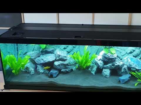 Juwel HeliaLux 1200 auf Aquatlantis Style LED 120