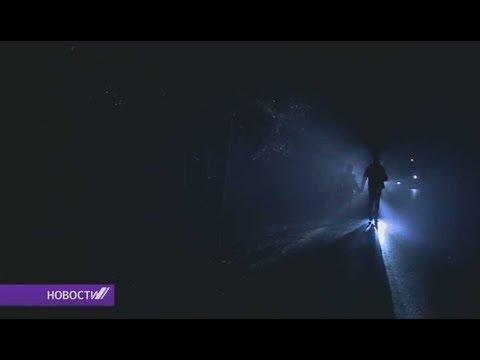 Ночь волков прошла в Беловежской пуще
