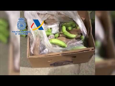 La droga de Frutas Mavaz valdría 14 millones de euros