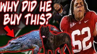 what-happened-to-terrance-mount-cody-why-he-can-no-longer-own-animals-re-upload