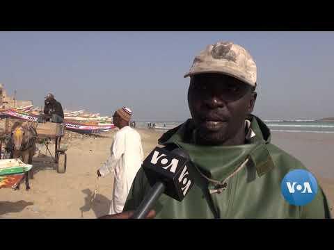 Overfishing Off Senegal Is Threatening Fish Stocks