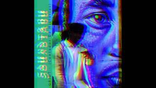 SOUNDTABU - Flor De Vida Feat Diana La Prieta Reggae Dub Riddim
