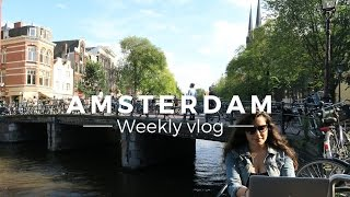 Moving to Amsterdam?