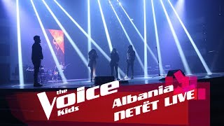 watch the voice video