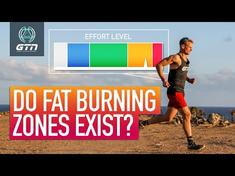 Do Fat Burning Zones Exist? | Using Fat As Fuel During Exercise