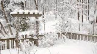 Премьер-министр   - Зимний сад(Премьер-министр - Зимний сад., 2013-02-21T07:32:28.000Z)