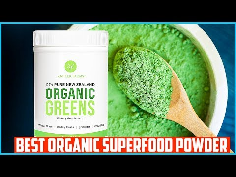 Top 5 Best Organic Superfood Powder in 2019
