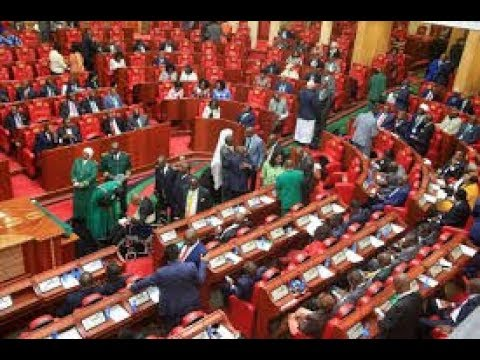 AntiVAT MPs stage demonstrations in Kenyas National Assembly