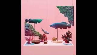 Peejay (피제이) - Stranger (feat. Crush)