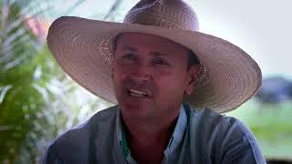 Conheça a história do produtor ruralAmarildo Merotti