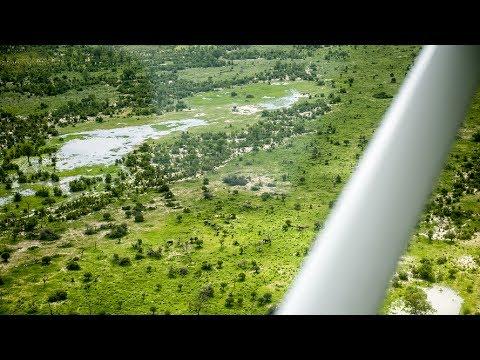 Das Okavangodelta von unten und oben