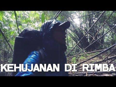 Kehujanan Di Tengah Hutan Penuh Pacet - Desa Juhu (Kalimantan#7)