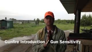 Gunfire Introduction / Gun Sensitivity Training