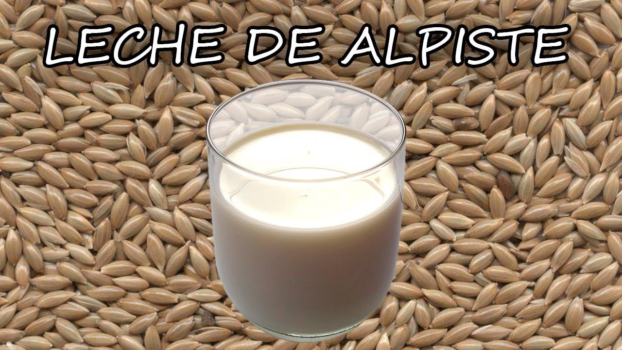 Receta Crudivegana De Leche De Alpiste