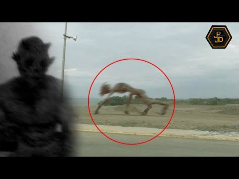 Top 5 Mysterious Creatures Caught On Camera 2019 Youtube