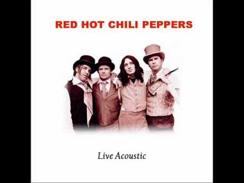 RHCP I COULD DIE FOR YOU LIVE ACOUSTIC