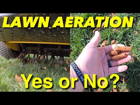 Should You Aerate Your lawn?
