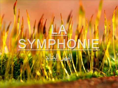 النهر الخالد موسيقى محمد عبد الوهاب  Mohamed Abd al wahab