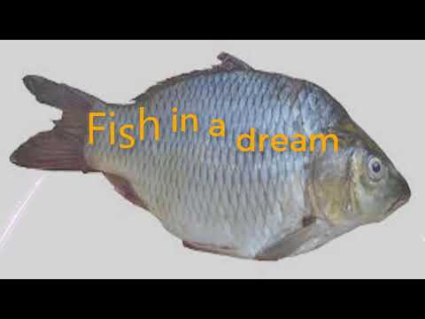 What Is The Meaning Of Fish In A Dream  |  Dreams Meaning And Interpretation