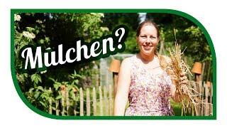 Mulchen im Garten und 💦 Wasser sparen 🍃 Bodenverbesserung im Garten
