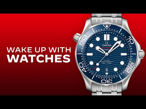 2021 Omega Seamaster Diver 300M: I Review The Ultimate Dive Watch For Under $5,000