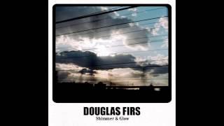 Douglas Firs - Shimmer & Glow
