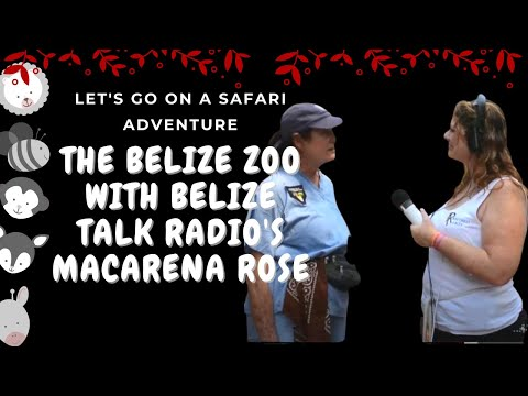 The Belize Zoo with Belize Talk Radio's Macarena Rose