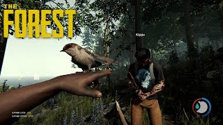 We Are Lost In the Forest|The Forest #1