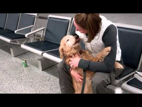 Dog (Molly) Sees Mom, Just Home From Afghanistan