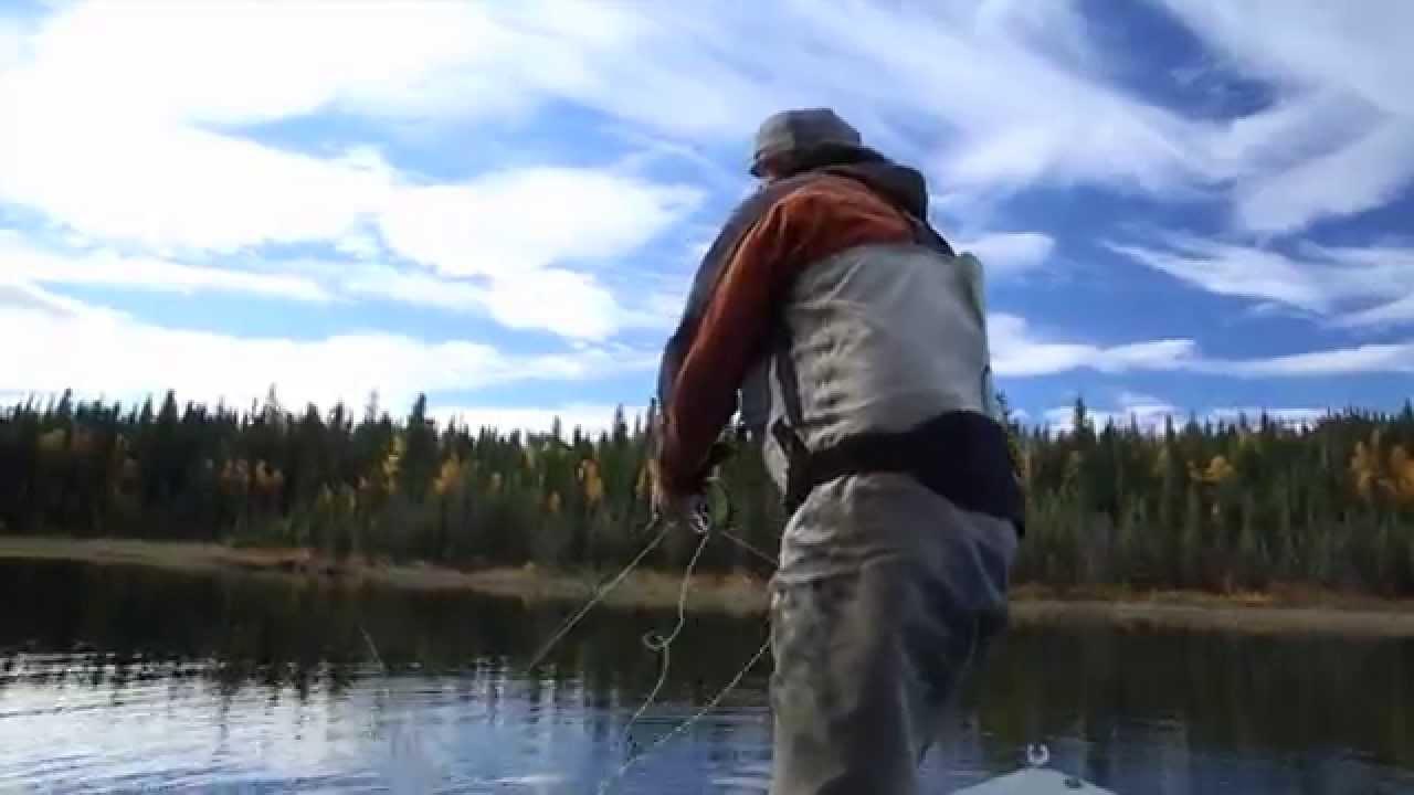 Kenai river fly fishing guide alaska 39 s angling addiction for Kenai river fish counts